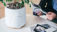 natede_natural_smart_air_purifier