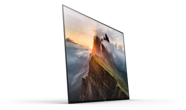 Sony XBR A1E Bravia 4KOLED TV
